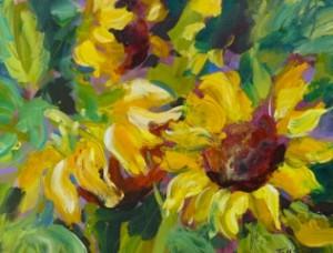sunflower-glory